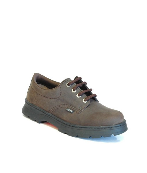 Brown Ink Laceup Shoe