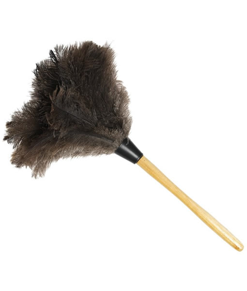 Feather Duster 1